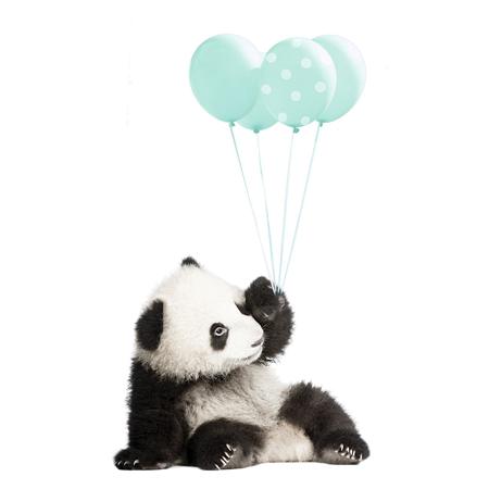 Slika Dekornik® Stenska nalepka Minty Panda