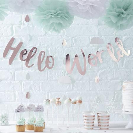 Immagine di Ginger Ray® Decorazioni per dolci Hello World 10 pz.