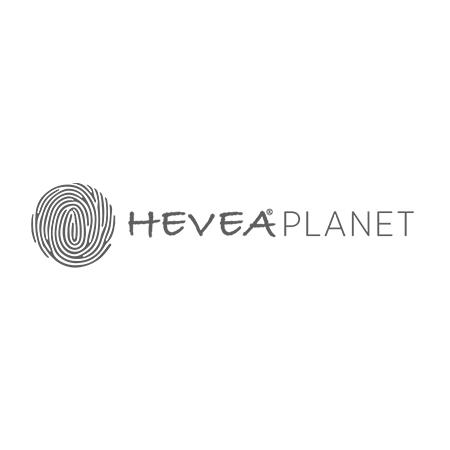 Hevea® Komplet barvnih igrač za kopanje Ribnik iz naravnega kavčuka