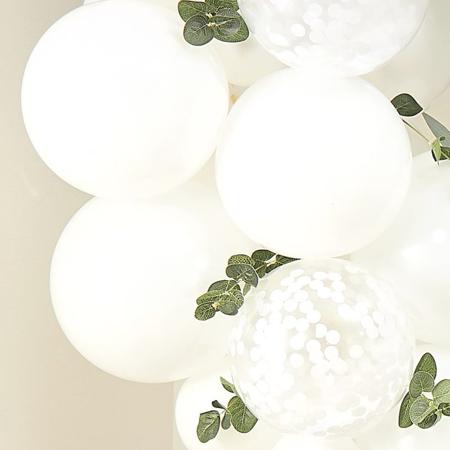 Slika Ginger Ray® Okrasne vejice evkaliptusa
