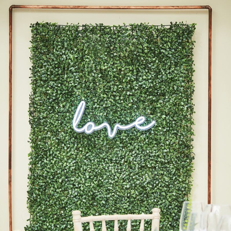 Slika Ginger Ray® Ozadje za fotografiranje Botanical