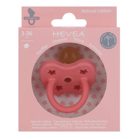 Hevea® Ortodontska duda iz kavčuka Colourful (3-36m) Coral