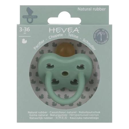 Hevea® Ortodontska duda iz kavčuka Colourful (3-36m) Pistachio