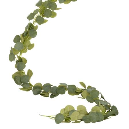 Slika Ginger Ray® Namizni dekorativni evkaliptus
