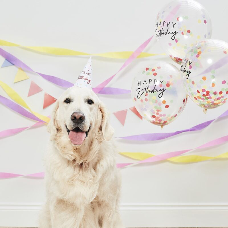 Ginger Ray® Pet Party Kit