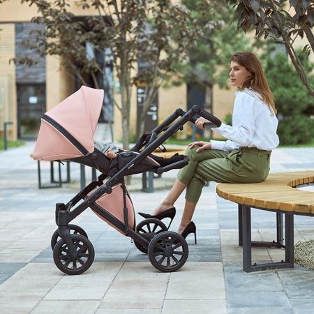 Anex® Otroški voziček s košaro in nahrbtnikom 2in1 E/Type (0-22kg) Peach