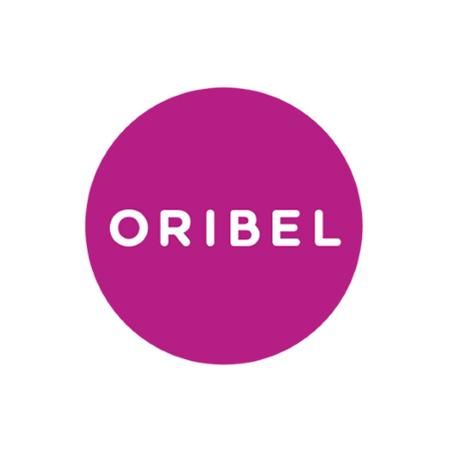 Oribel® Didaktična igrača Vertiplay Stem Merble Run School
