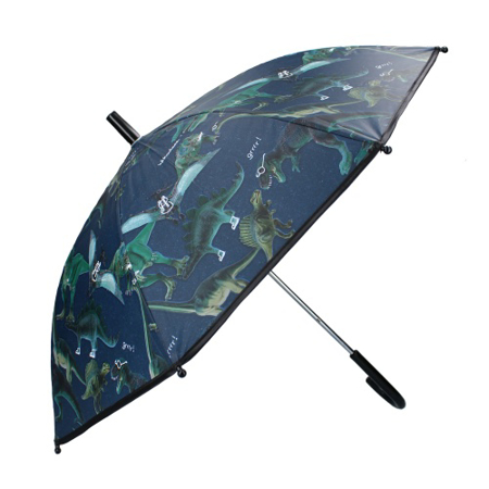 Slika Disney's Fashion® Otroški dežnik Don't Worry About Rain